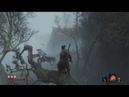 ГАЙД Как пройти ЛЕС и попасть в дом Где найти Туманного Вельможу в лесу Sekiro Секиро куда идти