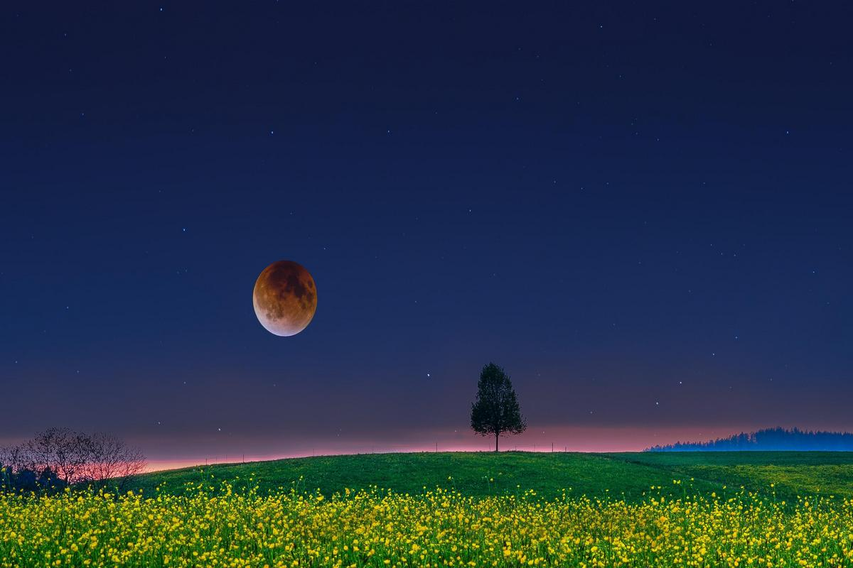 Спокойной ночи, чудесных вам снов, друзья