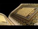 Свет пронзающий мрак в сути веры в Аллаха и неверии в тагута Часть 3 Абу Ханиф Абаза