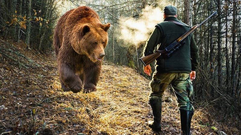Медведица пришла в деревню к людям и дала понять что им нужно срочно идти за ней