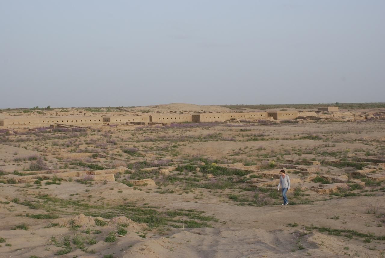 Гонур-депе, взгляд на кремль с запада. апрель 2009 г. (http://margiana.su/index.php/margiana-monuments/9-istoriya-arkheologicheskogo-izucheniya-margiany.html?showall=&start=1)