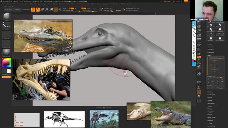 3DChar Lection 2 ZBrush создание модели