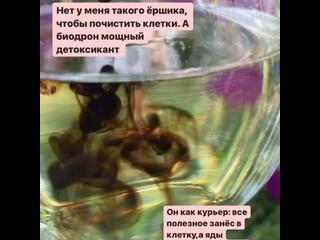 Видео от Галины Захаровой