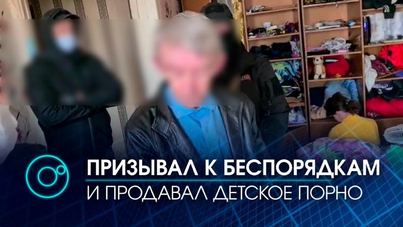 Детской порнографией торговал искитимец обвиняемый в призывах к массовым беспорядкам
