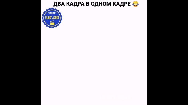 VID_31901226_035408_808.mp4