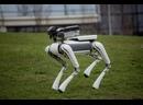 Самые удивительные роботы в мире