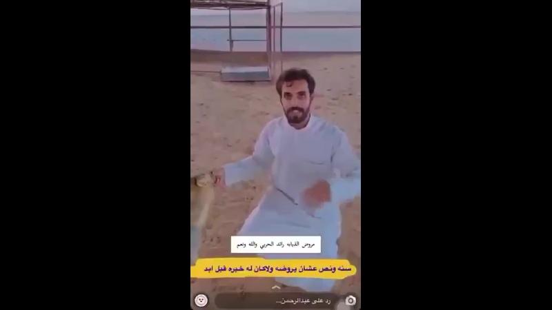 VIDEO 2020 08 16 16 17