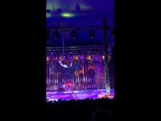 Видео от Елизаветы Погореловой