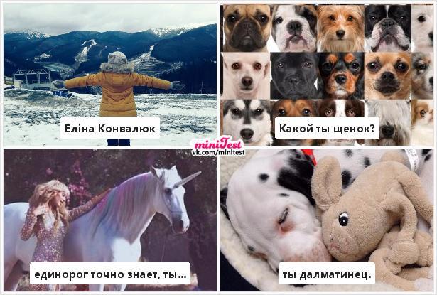 photo from album of Elіna Konvalyuk №12