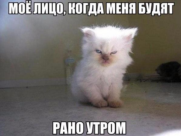 Кайрат, 21, Volzhskiy