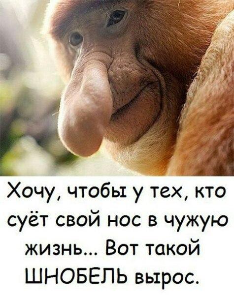 фото из альбома Анастасии Витковской №12