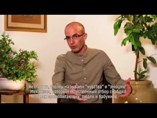 Юваль Ной Харари- Роль ученых в дискуссии о благополучии животных