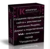 Создание продающего сайта +  рекламная кампания Яндекс.Директ + подключение Web - аналитики тариф  &