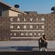 Calvin Harris feat. Ayah Marar - Thinking About You