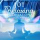 Mindfulness Meditation Music Spa Maestro - Top 100