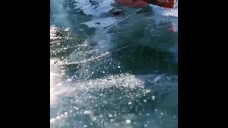 Видео от Дарьи Веселкиной