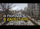Дагестанцев предупредили о засушливой погоде