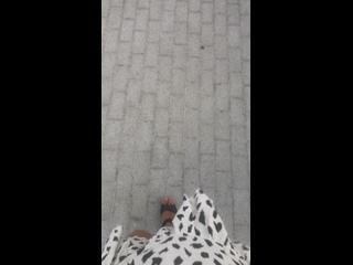 Видео от Марии Фартовой