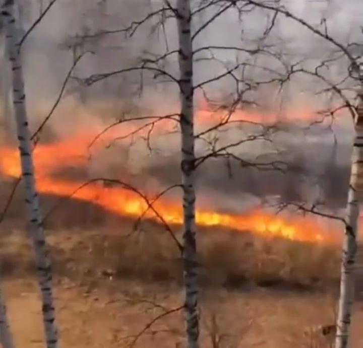 Языки пламени вот-вот подступят к домам: пал травы в Ярославле