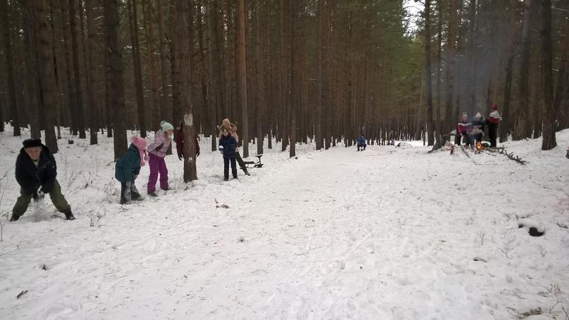 Совместная экологическая акция «Покормите птиц зимой!», изображение №6