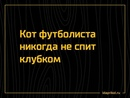 Дмитрий Колмаков фотография #4
