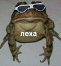 Личный фотоальбом Лёшы Филимонова
