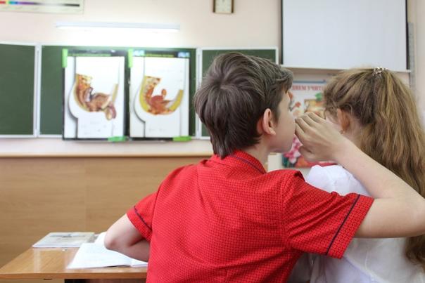 В омских школах будут говорить про секс, чтобы защ...