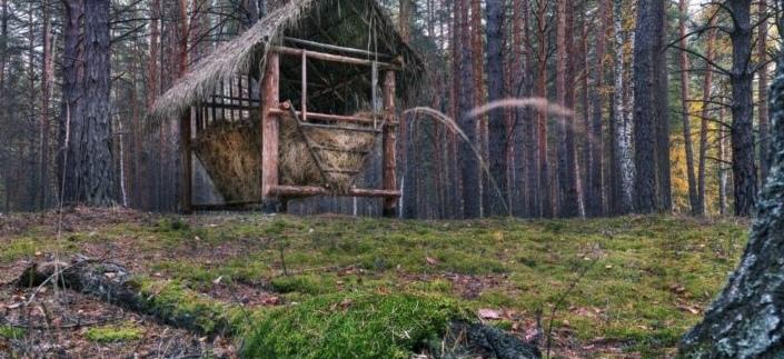 Белозерский район – уникальные археологические объекты!, изображение №4