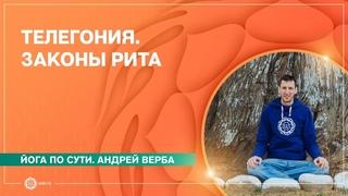 ТЕЛЕГОНИЯ. Законы Рита. Андрей Верба.