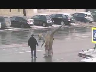 Jurassic park in chisinau