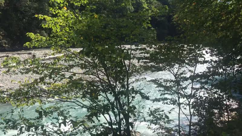 Архыз КЧР Природа потрясающая Вода ледяная и удивительного бирюзового цвета В реке водится форель