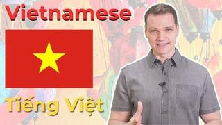The Vietnamese Language