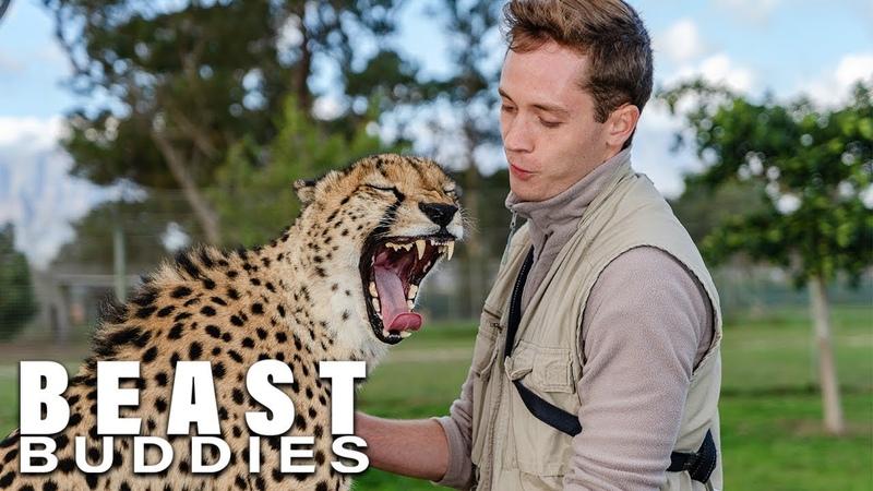 The Cheetah Man Raising Big Cats   BEAST BUDDIES