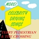 Terry Pedestrian & the Crossing - Wally Lewis