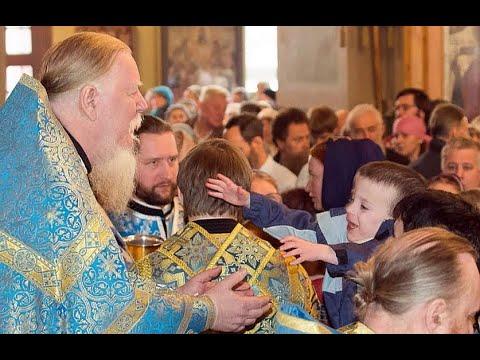 Отец Димитрий Смирнов батюшка который жалел и защищал детей Светлая вечная память