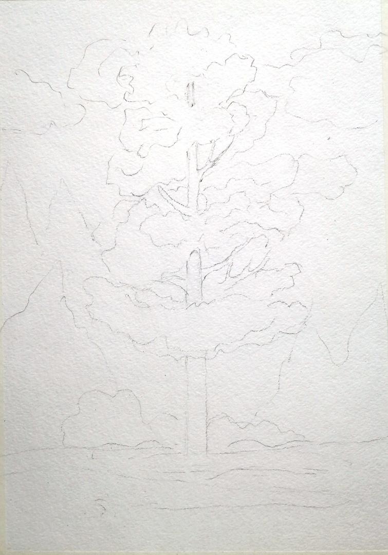 ОНЛАЙН-УРОК по рисованию «Сосна», изображение №4
