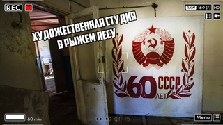 Последние кадры художественной мастерской в Рыжем лесу Чернобыля - до весенних пожаров