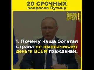 20 срочных вопросов Путину
