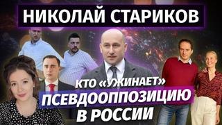 Николай Стариков: кто «ужинает» псевдооппозицию в России